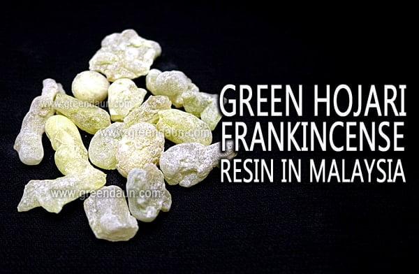 Where To Buy Raw Frankincense Resin In Malaysia - Green Daun